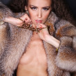 Fur coat sexy - Stock Photo