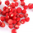 Red strawberry - Stock Photo
