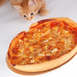 Royalty-Free Stock Photo: A cat smells pizza
