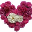 Floral heart — Stock Photo