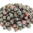 Stock Photo: Forestry blueberries