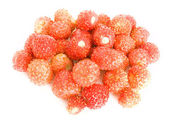 Forestry strawberries — Stock Photo