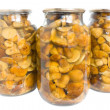Preserved mushroom - Stock Photo