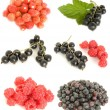 Fruit mixed — Stock Photo