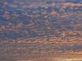 Evening sky — Stock Photo