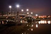 Bridge in Tsaritsino — Stock Photo