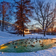 Helsinki park with pond — Stock Photo #1717940