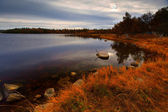 Autumn Lake in the morning — Stock Photo