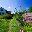 Stock Photo: Rural courtyard