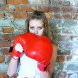 Blue-eyed girl the boxer — Stock Photo