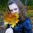 Girl holds yellow leaves — Stockfoto