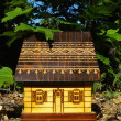 Stok fotoğraf: Model of the house among trees