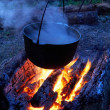 Pan on a fire — Stock Photo