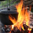 Pan on a fire — Stock Photo #1523911