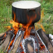 Pan on a fire — Stock Photo #1532844