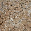 Earth which dried out — Stock Photo