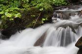 Waterfall Shipot, Ukraine — Stock Photo