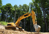 Excavator makes a forest road — Stock Photo