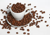 Corns of coffees and cup — Stock Photo