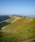 Mountain valley, Carpathians; Ukraine — Stock Photo