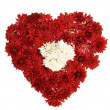 Flower heart — Stock Photo #1168940