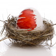 Easter egg in nest — Stock Photo #1203187