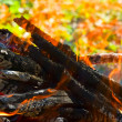 Royalty-Free Stock Photo: Close-up of fire