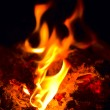 Fire — Stock Photo #1220368