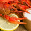 crawfish — Stock Photo #1223992