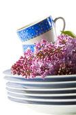 Tableware — Stock Photo