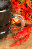 Beer and crawfish — Stock Photo