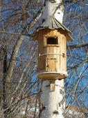 Birds house — Stock Photo