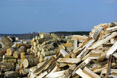 Preparaton of fire wood — Stock Photo