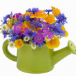 Bunch of flowers in the  watering pot — Stock Photo