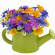 Bunch of flowers in the watering pot — Stock Photo #2046364