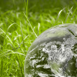 Green grass with earth — Stock Photo #1145122