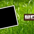 Energy outlet in grass with empty frame — Stock Photo #1258290