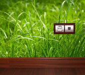 Energy outlet in grass — Fotografia Stock
