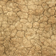 Stock Photo: Dry cracked mud natural abstract.