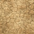 Foto de Stock  : Dry cracked mud natural abstract.