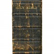 1868 Victorian bible spine isolated. — Stock Photo