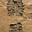 Royalty-Free Stock Photo: Walkers boot print in wet mud.