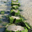 Large stepping stones across a stream. - Stock Photo