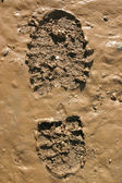 Walkers boot print in wet mud. — Stock Photo