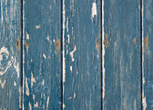Blue flaky paint on a wooden fence. — 图库照片