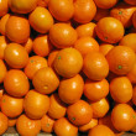 Lots of mandarin oranges. — Stock Photo