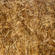 Close up of a straw bale. - Stock Photo