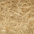 Close up of pieces of straw. — Stock Photo #2612676