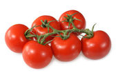 Red vine ripened British tomatoes. — Stock Photo