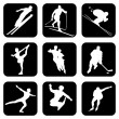 Sport_icons — Stockvectorbeeld